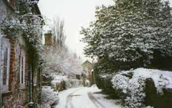 Photo of a Winter Scene